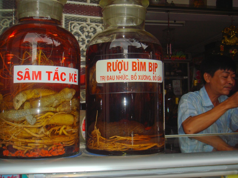 A specialty store selling snake and scorpion liquor