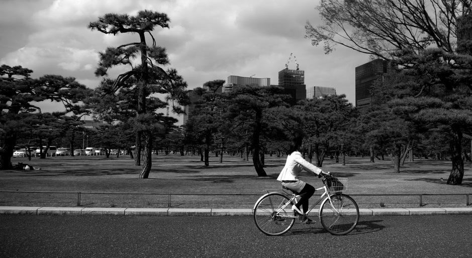 A woman cycles through the Kokyo Gaien National Garden
