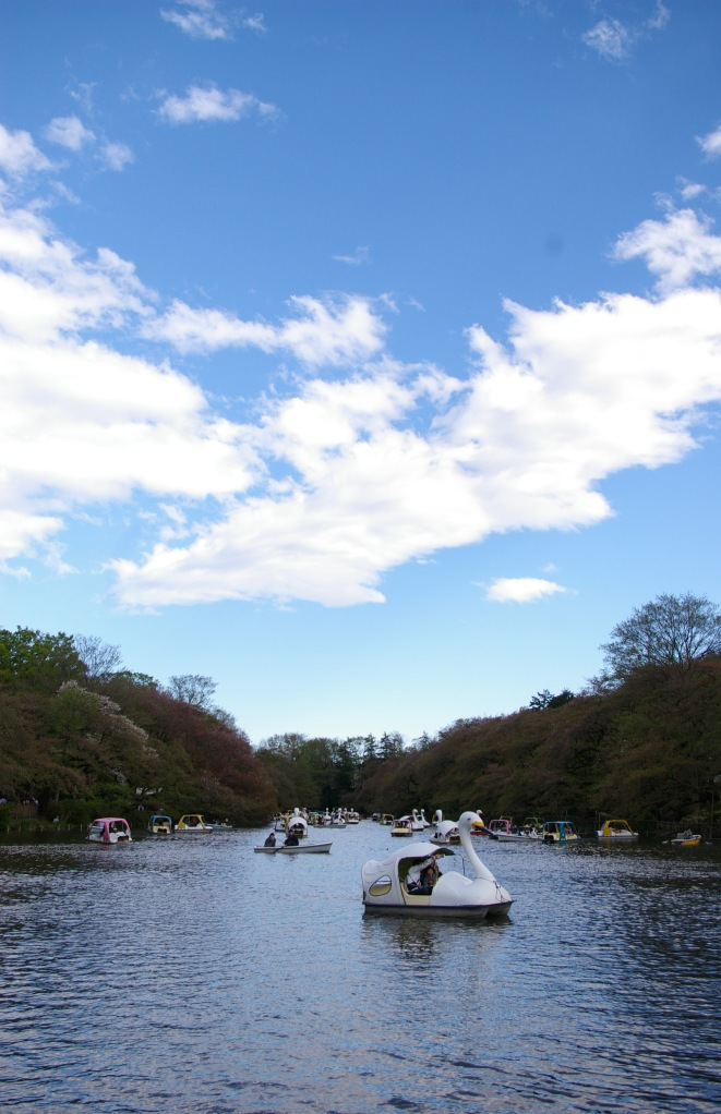 A sunny day in Inokashira Park